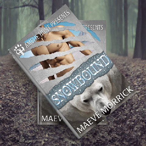 Cover design sample by Nate for Hiddem Gems Books.
