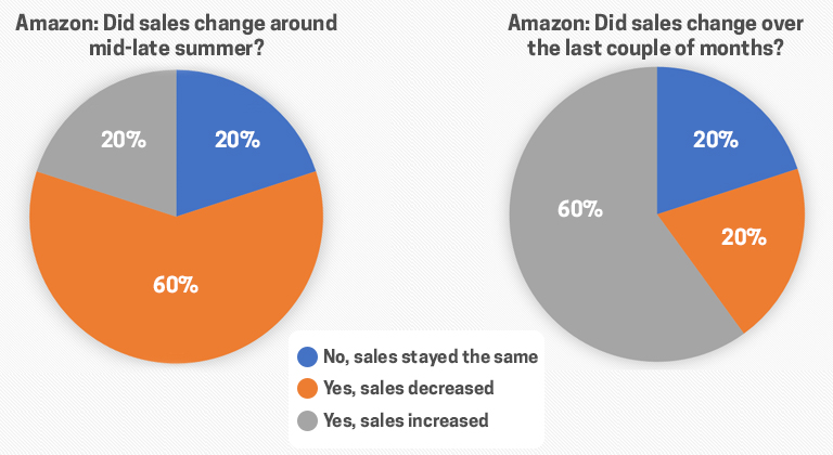 Sales Change Amazon